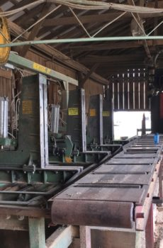 complete Montgomery FR40 automated sawmill for sale